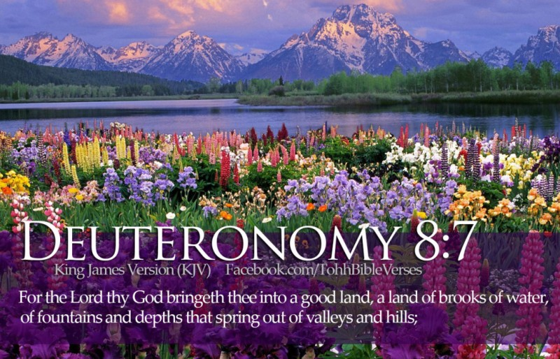 Bible-Verses-Deuteronomy-8-7-Beautiful-Flowers-River-Mountains-HD-Wallpaper-1024x658