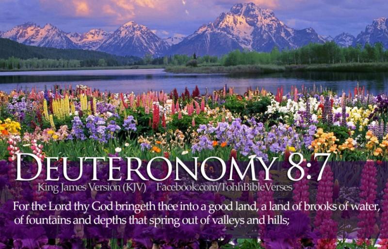 Bible-Verses-Deuteronomy-8-7-Beautiful-Flowers-River-Mountains-HD-Wallpaper-1024x658