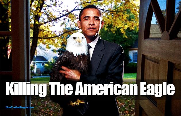 obama-to-allow-killing-american-eagle-socialist-marxist-communist
