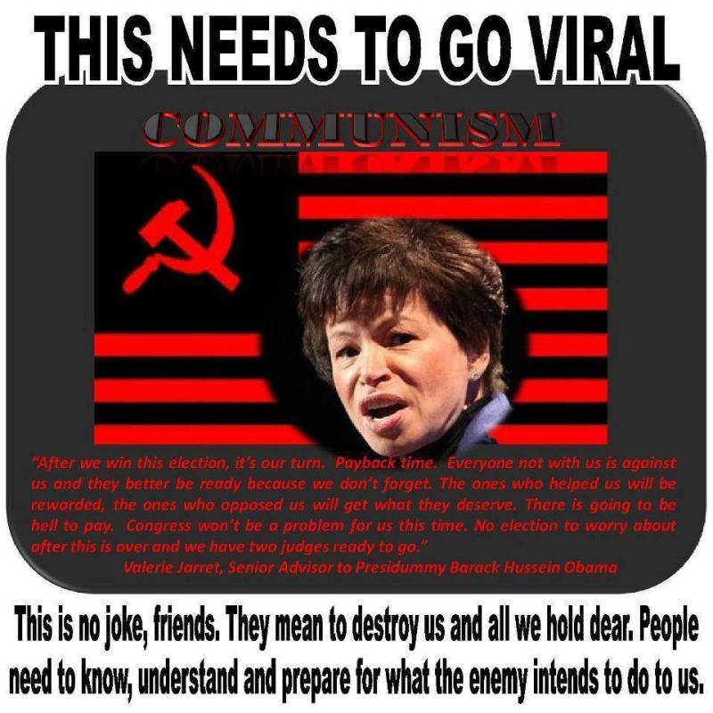 Valerie-Jarrett-103807160682