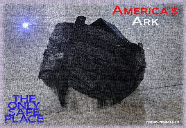 americasark(1)