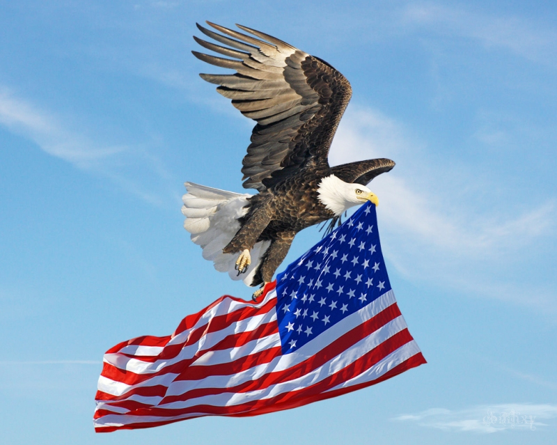 eagle_flying_american_flag_by_xybutterflyd4gbewp