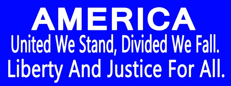 00535 AMERICA United We Stand Divided We Fall Liberty And Justice For All