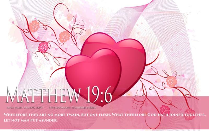 matthew 19 6 kjv