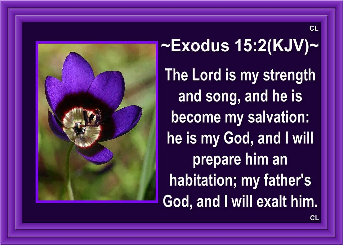 """Exodus 15:2 """"The Lord is my strength and my song, and he has ..."""