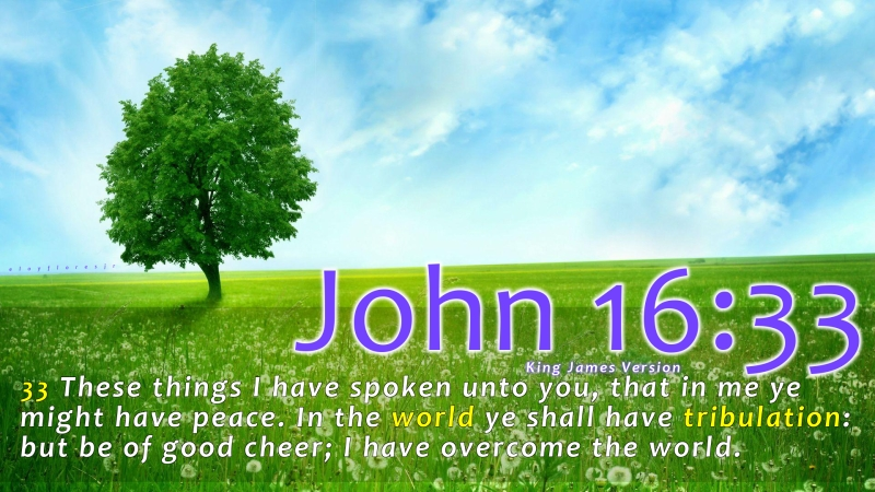 Image result for John 16:33 kjv