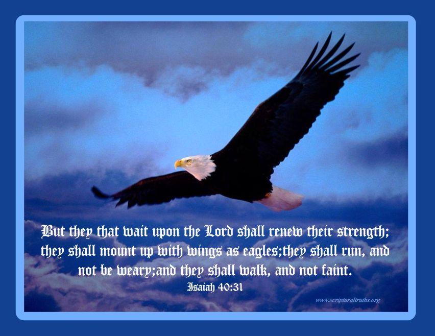 Isaiah 40.31 - May 2014