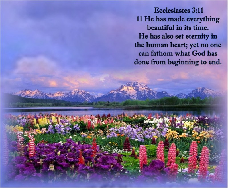 Image result for Eccl. 3: 10-11 KJV