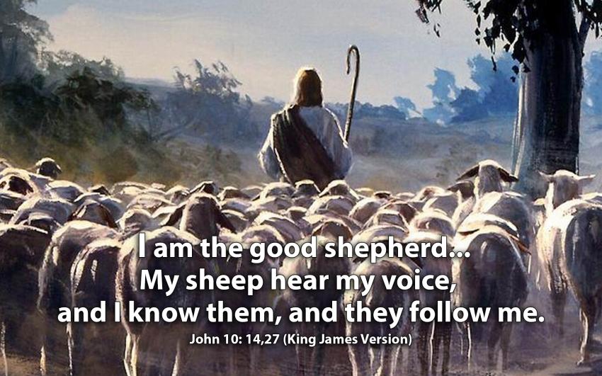 John 10:14 and 27 KJV!! | Kristi Ann's Haven