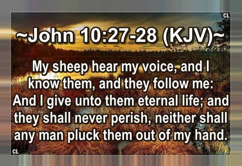 John 10:27-30 KJV and more!! | Kristi Ann's Haven