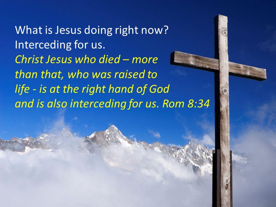 Romans 8:34 KJV and more!! | Kristi Ann's Haven